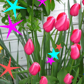 tulips_with_designs