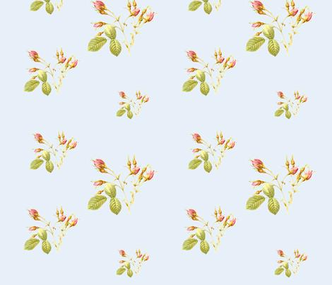 RoseBud in Powder Blue fabric by lilyoake on Spoonflower - custom fabric