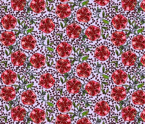 Rrrrrpomegranate_and_frog_1_copy_shop_preview