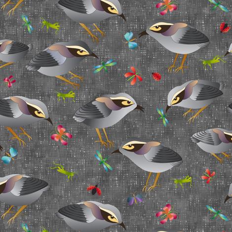 Mātuhi - the New Zealand Bush Wren fabric by vo_aka_virginiao on Spoonflower - custom fabric