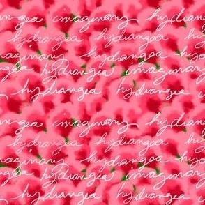Texty Hydrangea