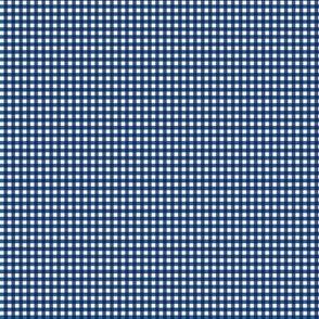 Tighter Plaid Blue