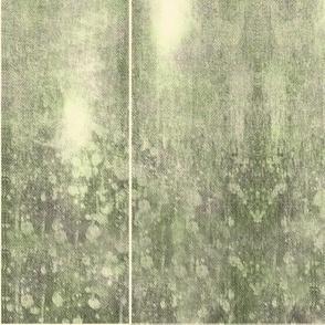 MSD Moss