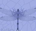 Rrrgriffinflyspot_comment_178009_thumb