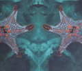 Rrrrstarfish_bg_done_for_stepping_comment_212894_thumb