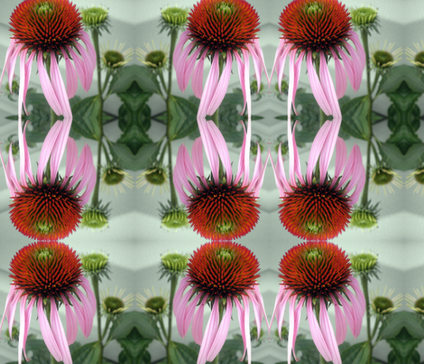 Muted Cone Flower fabric by persimondreams on Spoonflower - custom fabric