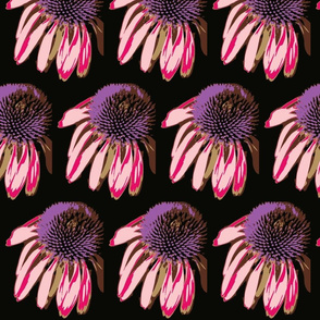 Cone Flowers in the dark in purple