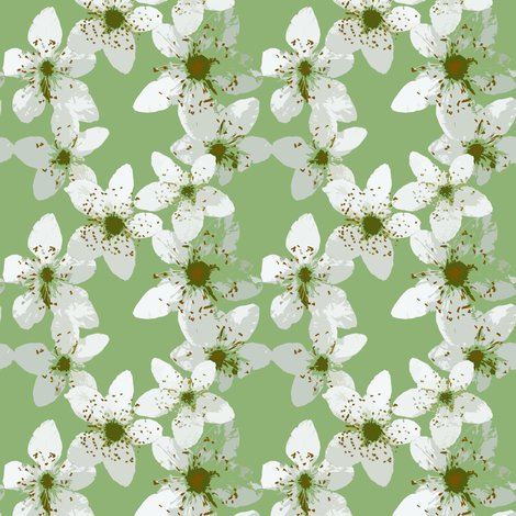 Rrrblackberry_blossom2_shop_preview
