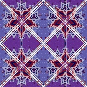 S&S(purple)