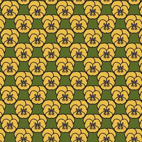 Pansy_yellow
