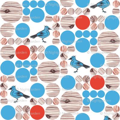 Blue Bird Dots