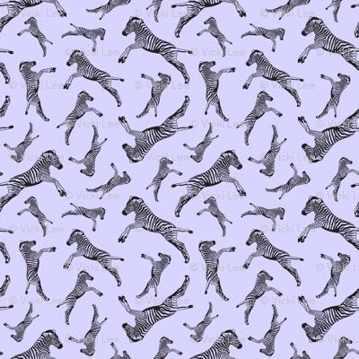 Zebras Lavishing in Lilac
