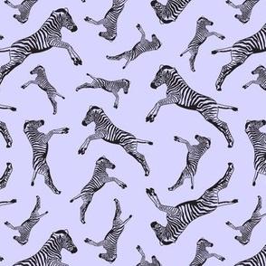 Zebras Lavishing in Lilac