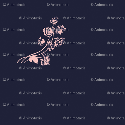 Pink Floral On Navy