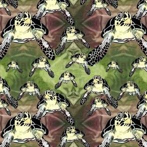 Big turtles and Baby Turtles