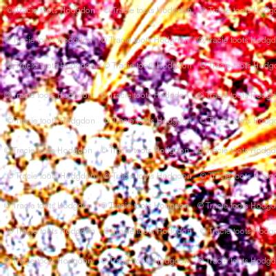 jewels16