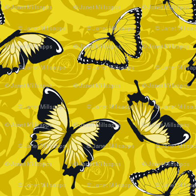 Small Yellow Butterflies on Yellow