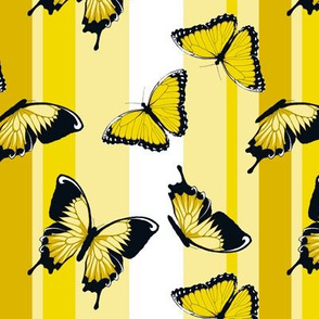 Yellow Butterflies on Yellow Stripes