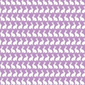 Bunnies on Parade - Purple