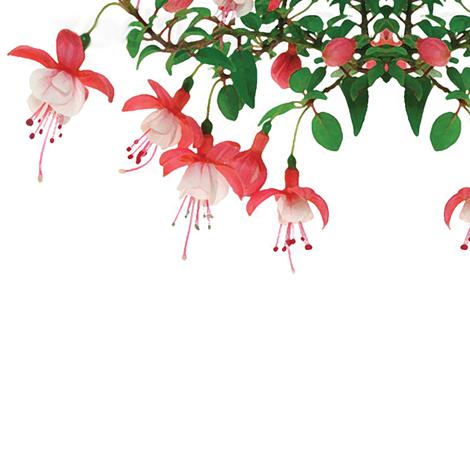 FuschiaChandlier fabric by creating_marks on Spoonflower - custom fabric
