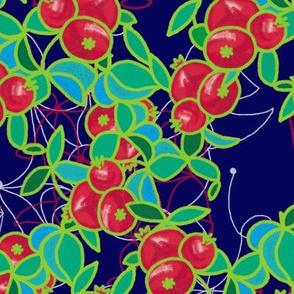 Pomegranates by Su_G