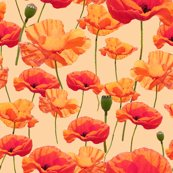 Rrwizard_of_oz_-_orange_poppies_shop_thumb