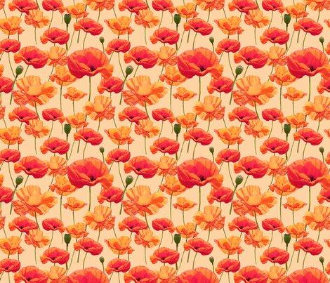Rrrrrrwizard_of_oz_-_orange_poppies_shop_preview