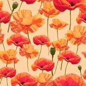 Rrrrrrwizard_of_oz_-_orange_poppies_shop_thumb