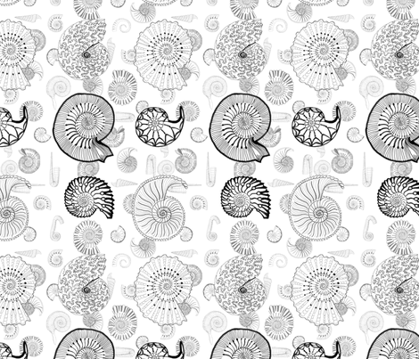 Ammonite fabric by queeninmyownmind on Spoonflower - custom fabric