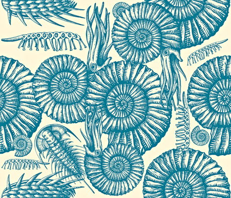 ammonite- emerald fabric by chicca_besso on Spoonflower - custom fabric