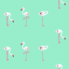 Flamingo Turquoise Small