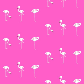 Flamingo Pink XL