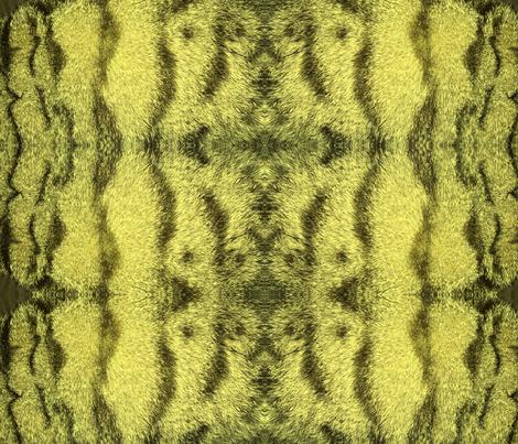 jasp1 fabric by jaspermonkey on Spoonflower - custom fabric
