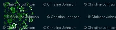 A jasmine and Ginkgo border