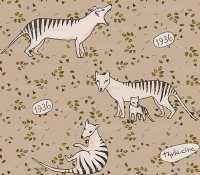 Thylacine so beautiful