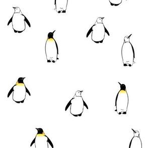 PenguinA2012
