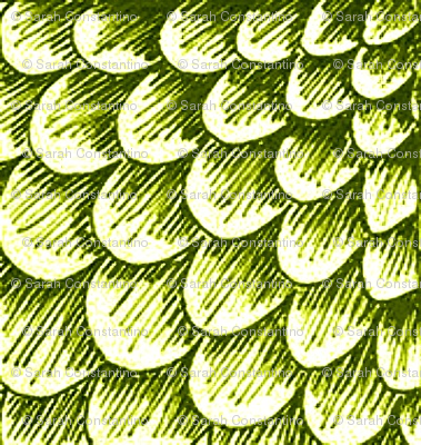 Artichoke scales