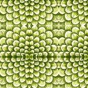 Rgreenscales_shop_thumb
