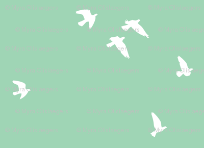 flock teal