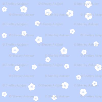 Bluebird Blossoms