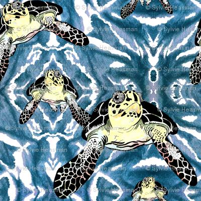 Turtles_in_Teal