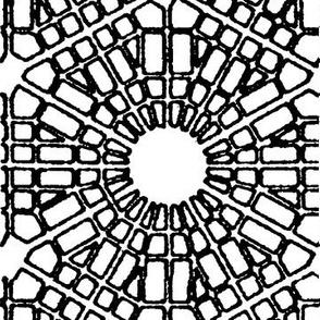 Cotati Square
