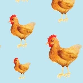 Summer Kitchen Chickens