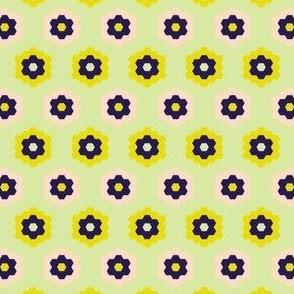 Honeycomb- Pistachio