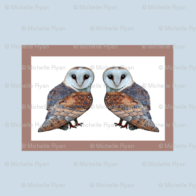 The Owl Collection Barn Owl Tile