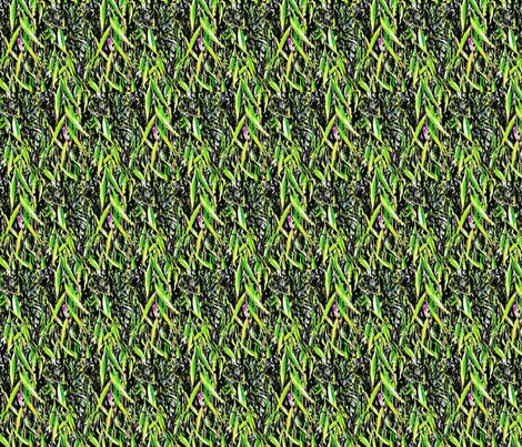 Rrrwillow_leaves_hdr_effect_ed_shop_preview