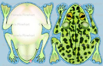 Frog Pillow Kit