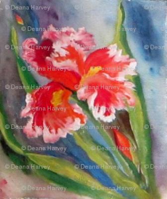 Iris Orange Ruffle _Swatch