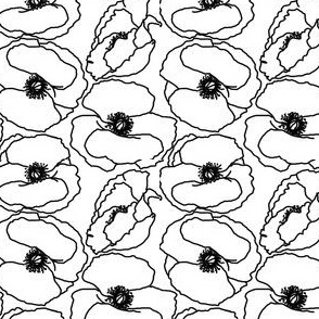 poppy_white