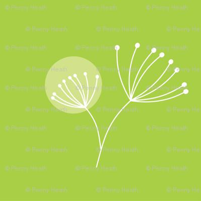Lime Dot Dandelion